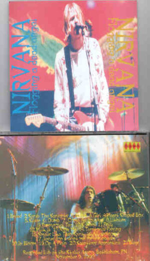 Nirvana - Flogging A Dead Angel ( Stable Arena , Bethlehem , Pennsylvania , November 9th , 1993 )