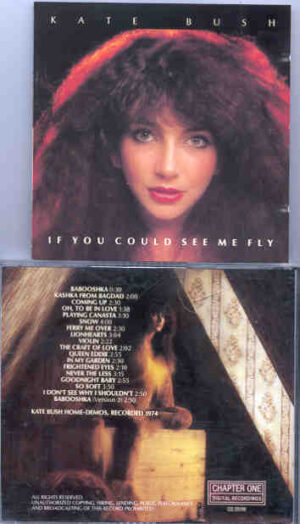Kate Bush - If You Could See Me Fly ( Home Demos 1974) ( Chapter One Recs )